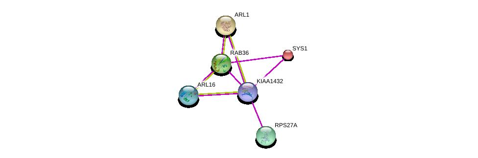 http://string-db.org/version_10/api/image/networkList?limit=0&targetmode=proteins&caller_identity=gene_cards&network_flavor=evidence&identifiers=9606.ENSP00000416696%0d%0a9606.ENSP00000272317%0d%0a9606.ENSP00000243918%0d%0a9606.ENSP00000261636%0d%0a9606.ENSP00000380635%0d%0a9606.ENSP00000263116%0d%0a