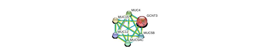 http://string-db.org/version_10/api/image/networkList?limit=0&targetmode=proteins&caller_identity=gene_cards&network_flavor=evidence&identifiers=9606.ENSP00000416753%0d%0a9606.ENSP00000441929%0d%0a9606.ENSP00000436812%0d%0a9606.ENSP00000435591%0d%0a9606.ENSP00000417498%0d%0a9606.ENSP00000379377%0d%0a