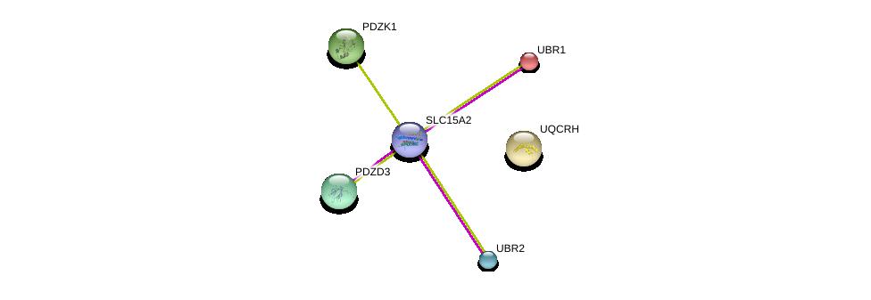 http://string-db.org/version_10/api/image/networkList?limit=0&targetmode=proteins&caller_identity=gene_cards&network_flavor=evidence&identifiers=9606.ENSP00000417085%0d%0a9606.ENSP00000309565%0d%0a9606.ENSP00000342143%0d%0a9606.ENSP00000347742%0d%0a9606.ENSP00000290650%0d%0a9606.ENSP00000361990%0d%0a