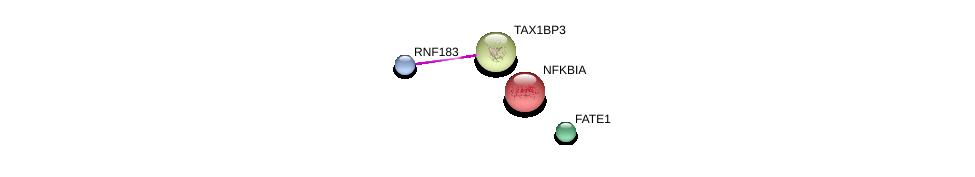 http://string-db.org/version_10/api/image/networkList?limit=0&targetmode=proteins&caller_identity=gene_cards&network_flavor=evidence&identifiers=9606.ENSP00000417176%0d%0a9606.ENSP00000225525%0d%0a9606.ENSP00000216797%0d%0a9606.ENSP00000359375%0d%0a