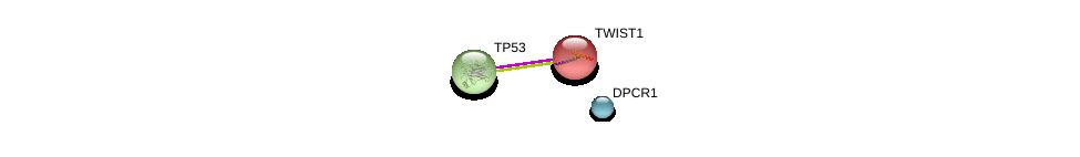 http://string-db.org/version_10/api/image/networkList?limit=0&targetmode=proteins&caller_identity=gene_cards&network_flavor=evidence&identifiers=9606.ENSP00000417182%0d%0a9606.ENSP00000242261%0d%0a9606.ENSP00000269305%0d%0a