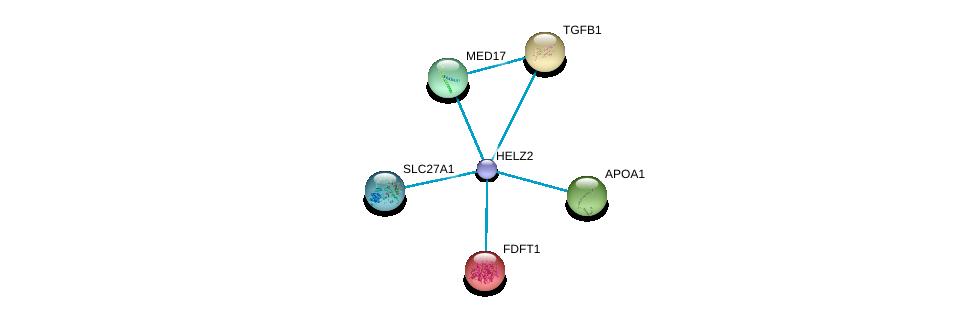 http://string-db.org/version_10/api/image/networkList?limit=0&targetmode=proteins&caller_identity=gene_cards&network_flavor=evidence&identifiers=9606.ENSP00000417401%0d%0a9606.ENSP00000220584%0d%0a9606.ENSP00000221930%0d%0a9606.ENSP00000236850%0d%0a9606.ENSP00000251871%0d%0a9606.ENSP00000252595%0d%0a