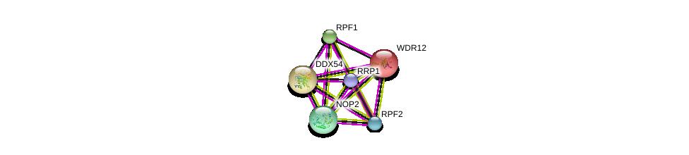 http://string-db.org/version_10/api/image/networkList?limit=0&targetmode=proteins&caller_identity=gene_cards&network_flavor=evidence&identifiers=9606.ENSP00000417464%0d%0a9606.ENSP00000382392%0d%0a9606.ENSP00000402338%0d%0a9606.ENSP00000359688%0d%0a9606.ENSP00000261015%0d%0a9606.ENSP00000323858%0d%0a