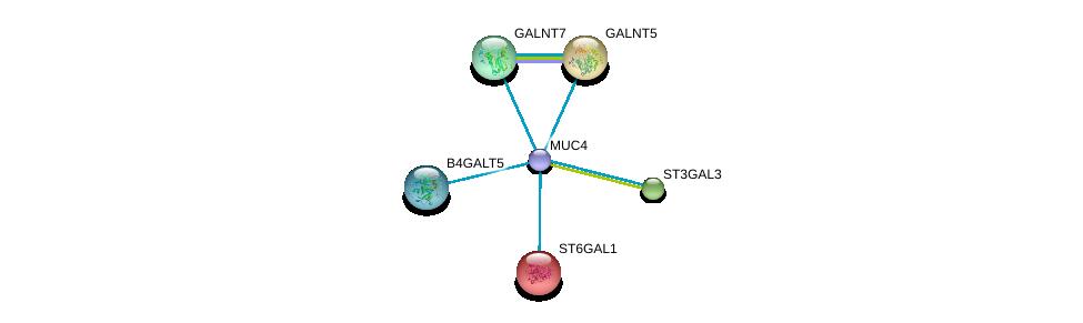 http://string-db.org/version_10/api/image/networkList?limit=0&targetmode=proteins&caller_identity=gene_cards&network_flavor=evidence&identifiers=9606.ENSP00000417498%0d%0a9606.ENSP00000360776%0d%0a9606.ENSP00000169298%0d%0a9606.ENSP00000259056%0d%0a9606.ENSP00000262915%0d%0a9606.ENSP00000265000%0d%0a