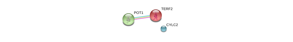 http://string-db.org/version_10/api/image/networkList?limit=0&targetmode=proteins&caller_identity=gene_cards&network_flavor=evidence&identifiers=9606.ENSP00000417674%0d%0a9606.ENSP00000350249%0d%0a9606.ENSP00000254942%0d%0a