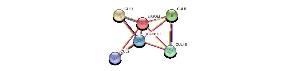 http://string-db.org/version_10/api/image/networkList?limit=0&targetmode=proteins&caller_identity=gene_cards&network_flavor=evidence&identifiers=9606.ENSP00000417706%0d%0a9606.ENSP00000326804%0d%0a9606.ENSP00000253023%0d%0a9606.ENSP00000444856%0d%0a9606.ENSP00000384109%0d%0a9606.ENSP00000376808%0d%0a