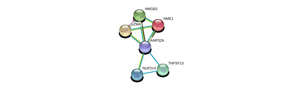 http://string-db.org/version_10/api/image/networkList?limit=0&targetmode=proteins&caller_identity=gene_cards&network_flavor=evidence&identifiers=9606.ENSP00000417864%0d%0a9606.ENSP00000352400%0d%0a9606.ENSP00000343505%0d%0a9606.ENSP00000013034%0d%0a9606.ENSP00000274306%0d%0a9606.ENSP00000296503%0d%0a
