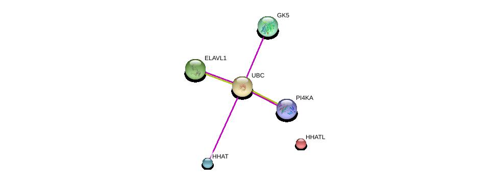http://string-db.org/version_10/api/image/networkList?limit=0&targetmode=proteins&caller_identity=gene_cards&network_flavor=evidence&identifiers=9606.ENSP00000418001%0d%0a9606.ENSP00000344818%0d%0a9606.ENSP00000438468%0d%0a9606.ENSP00000310621%0d%0a9606.ENSP00000458238%0d%0a9606.ENSP00000385269%0d%0a