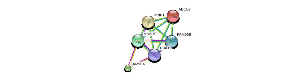 http://string-db.org/version_10/api/image/networkList?limit=0&targetmode=proteins&caller_identity=gene_cards&network_flavor=evidence&identifiers=9606.ENSP00000418287%0d%0a9606.ENSP00000359818%0d%0a9606.ENSP00000387471%0d%0a9606.ENSP00000300030%0d%0a9606.ENSP00000253577%0d%0a9606.ENSP00000259008%0d%0a