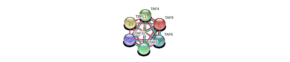 http://string-db.org/version_10/api/image/networkList?limit=0&targetmode=proteins&caller_identity=gene_cards&network_flavor=evidence&identifiers=9606.ENSP00000418379%0d%0a9606.ENSP00000358854%0d%0a9606.ENSP00000399982%0d%0a9606.ENSP00000217893%0d%0a9606.ENSP00000252996%0d%0a9606.ENSP00000237264%0d%0a