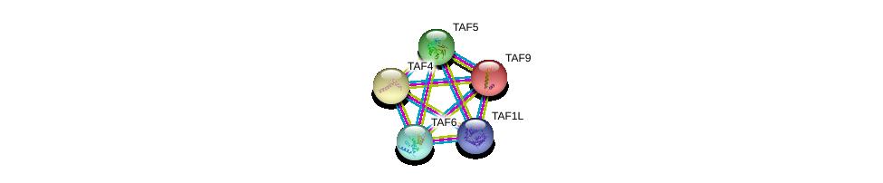 http://string-db.org/version_10/api/image/networkList?limit=0&targetmode=proteins&caller_identity=gene_cards&network_flavor=evidence&identifiers=9606.ENSP00000418379%0d%0a9606.ENSP00000358854%0d%0a9606.ENSP00000399982%0d%0a9606.ENSP00000217893%0d%0a9606.ENSP00000252996%0d%0a9606.ENSP00000252996%0d%0a