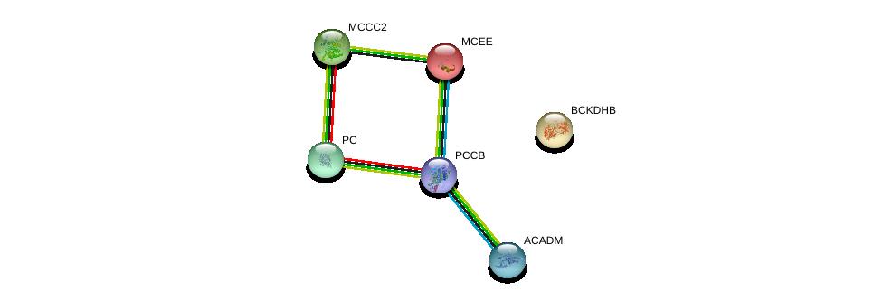 http://string-db.org/version_10/api/image/networkList?limit=0&targetmode=proteins&caller_identity=gene_cards&network_flavor=evidence&identifiers=9606.ENSP00000419027%0d%0a9606.ENSP00000244217%0d%0a9606.ENSP00000409612%0d%0a9606.ENSP00000318351%0d%0a9606.ENSP00000377527%0d%0a9606.ENSP00000343657%0d%0a