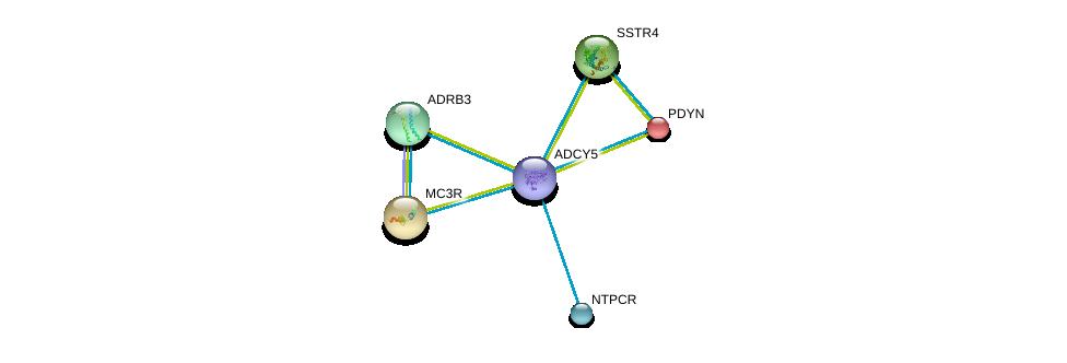 http://string-db.org/version_10/api/image/networkList?limit=0&targetmode=proteins&caller_identity=gene_cards&network_flavor=evidence&identifiers=9606.ENSP00000419361%0d%0a9606.ENSP00000255008%0d%0a9606.ENSP00000343782%0d%0a9606.ENSP00000243911%0d%0a9606.ENSP00000355587%0d%0a9606.ENSP00000217305%0d%0a