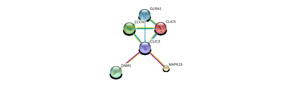 http://string-db.org/version_10/api/image/networkList?limit=0&targetmode=proteins&caller_identity=gene_cards&network_flavor=evidence&identifiers=9606.ENSP00000419378%0d%0a9606.ENSP00000337691%0d%0a9606.ENSP00000362014%0d%0a9606.ENSP00000411593%0d%0a9606.ENSP00000185206%0d%0a9606.ENSP00000339867%0d%0a