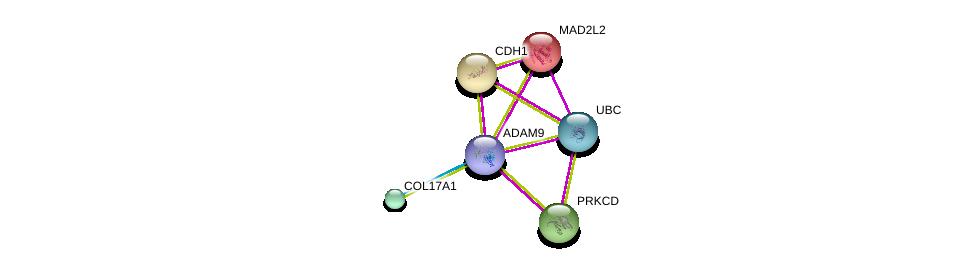 http://string-db.org/version_10/api/image/networkList?limit=0&targetmode=proteins&caller_identity=gene_cards&network_flavor=evidence&identifiers=9606.ENSP00000419446%0d%0a9606.ENSP00000340937%0d%0a9606.ENSP00000344818%0d%0a9606.ENSP00000235310%0d%0a9606.ENSP00000261769%0d%0a9606.ENSP00000331602%0d%0a