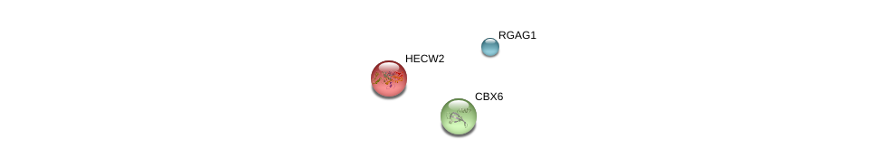 http://string-db.org/version_10/api/image/networkList?limit=0&targetmode=proteins&caller_identity=gene_cards&network_flavor=evidence&identifiers=9606.ENSP00000419786%0d%0a9606.ENSP00000384490%0d%0a9606.ENSP00000260983%0d%0a