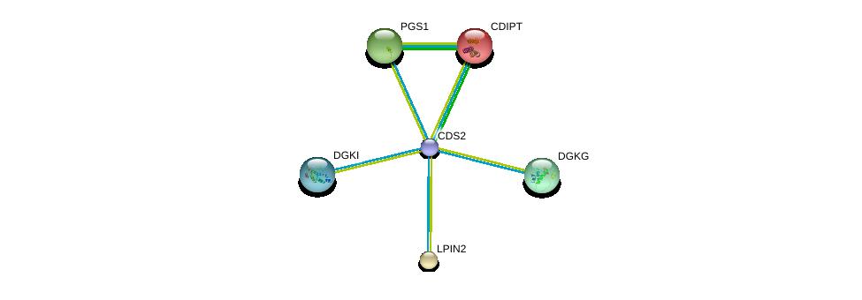 http://string-db.org/version_10/api/image/networkList?limit=0&targetmode=proteins&caller_identity=gene_cards&network_flavor=evidence&identifiers=9606.ENSP00000419879%0d%0a9606.ENSP00000219789%0d%0a9606.ENSP00000261596%0d%0a9606.ENSP00000262764%0d%0a9606.ENSP00000265022%0d%0a9606.ENSP00000288490%0d%0a