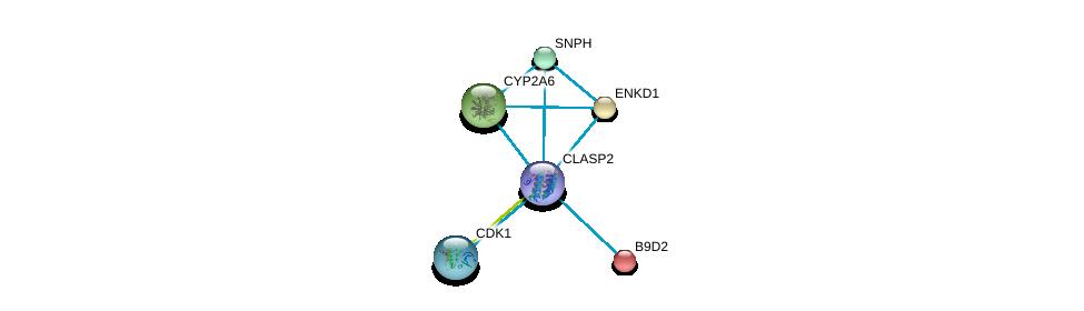 http://string-db.org/version_10/api/image/networkList?limit=0&targetmode=proteins&caller_identity=gene_cards&network_flavor=evidence&identifiers=9606.ENSP00000419974%0d%0a9606.ENSP00000243578%0d%0a9606.ENSP00000371297%0d%0a9606.ENSP00000301141%0d%0a9606.ENSP00000243878%0d%0a9606.ENSP00000378699%0d%0a