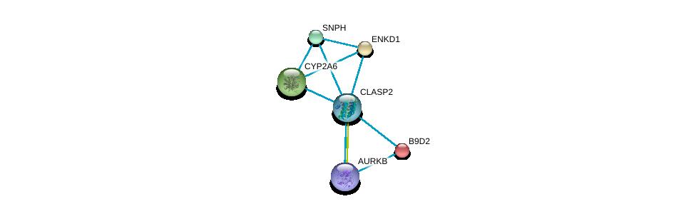 http://string-db.org/version_10/api/image/networkList?limit=0&targetmode=proteins&caller_identity=gene_cards&network_flavor=evidence&identifiers=9606.ENSP00000419974%0d%0a9606.ENSP00000243578%0d%0a9606.ENSP00000371297%0d%0a9606.ENSP00000301141%0d%0a9606.ENSP00000243878%0d%0a9606.ENSP00000463999%0d%0a