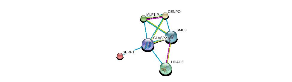 http://string-db.org/version_10/api/image/networkList?limit=0&targetmode=proteins&caller_identity=gene_cards&network_flavor=evidence&identifiers=9606.ENSP00000419974%0d%0a9606.ENSP00000281453%0d%0a9606.ENSP00000354720%0d%0a9606.ENSP00000302967%0d%0a9606.ENSP00000239944%0d%0a9606.ENSP00000260662%0d%0a