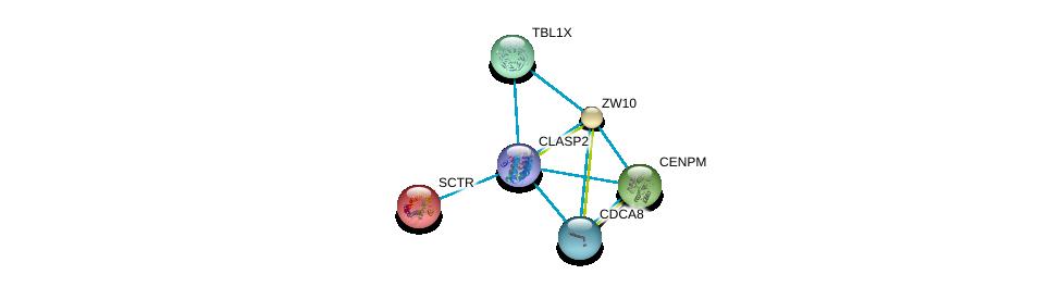 http://string-db.org/version_10/api/image/networkList?limit=0&targetmode=proteins&caller_identity=gene_cards&network_flavor=evidence&identifiers=9606.ENSP00000419974%0d%0a9606.ENSP00000316121%0d%0a9606.ENSP00000019103%0d%0a9606.ENSP00000200135%0d%0a9606.ENSP00000215980%0d%0a9606.ENSP00000217964%0d%0a