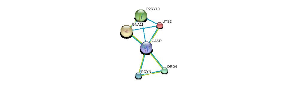 http://string-db.org/version_10/api/image/networkList?limit=0&targetmode=proteins&caller_identity=gene_cards&network_flavor=evidence&identifiers=9606.ENSP00000420194%0d%0a9606.ENSP00000054668%0d%0a9606.ENSP00000078429%0d%0a9606.ENSP00000171757%0d%0a9606.ENSP00000176183%0d%0a9606.ENSP00000217305%0d%0a