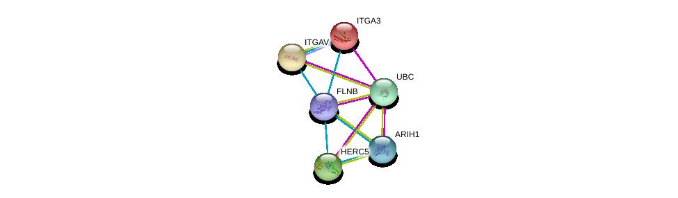 http://string-db.org/version_10/api/image/networkList?limit=0&targetmode=proteins&caller_identity=gene_cards&network_flavor=evidence&identifiers=9606.ENSP00000420213%0d%0a9606.ENSP00000344818%0d%0a9606.ENSP00000369217%0d%0a9606.ENSP00000264350%0d%0a9606.ENSP00000007722%0d%0a9606.ENSP00000261023%0d%0a
