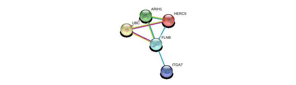 http://string-db.org/version_10/api/image/networkList?limit=0&targetmode=proteins&caller_identity=gene_cards&network_flavor=evidence&identifiers=9606.ENSP00000420213%0d%0a9606.ENSP00000344818%0d%0a9606.ENSP00000369217%0d%0a9606.ENSP00000369217%0d%0a9606.ENSP00000264350%0d%0a9606.ENSP00000452120%0d%0a
