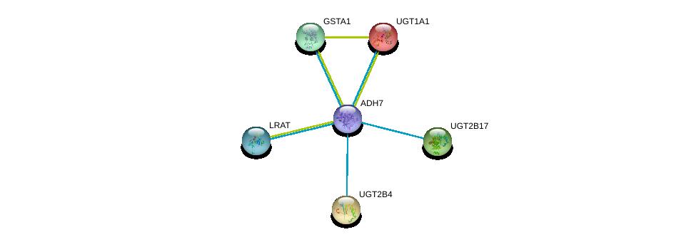 http://string-db.org/version_10/api/image/networkList?limit=0&targetmode=proteins&caller_identity=gene_cards&network_flavor=evidence&identifiers=9606.ENSP00000420269%0d%0a9606.ENSP00000335620%0d%0a9606.ENSP00000337224%0d%0a9606.ENSP00000320401%0d%0a9606.ENSP00000305221%0d%0a9606.ENSP00000304845%0d%0a