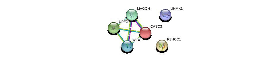 http://string-db.org/version_10/api/image/networkList?limit=0&targetmode=proteins&caller_identity=gene_cards&network_flavor=evidence&identifiers=9606.ENSP00000420270%0d%0a9606.ENSP00000265806%0d%0a9606.ENSP00000264645%0d%0a9606.ENSP00000386156%0d%0a9606.ENSP00000360525%0d%0a9606.ENSP00000348708%0d%0a