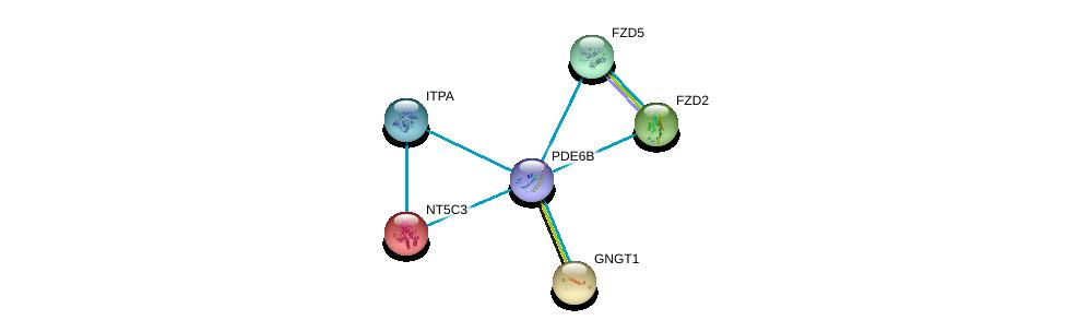 http://string-db.org/version_10/api/image/networkList?limit=0&targetmode=proteins&caller_identity=gene_cards&network_flavor=evidence&identifiers=9606.ENSP00000420295%0d%0a9606.ENSP00000248572%0d%0a9606.ENSP00000323901%0d%0a9606.ENSP00000369456%0d%0a9606.ENSP00000354607%0d%0a9606.ENSP00000242210%0d%0a