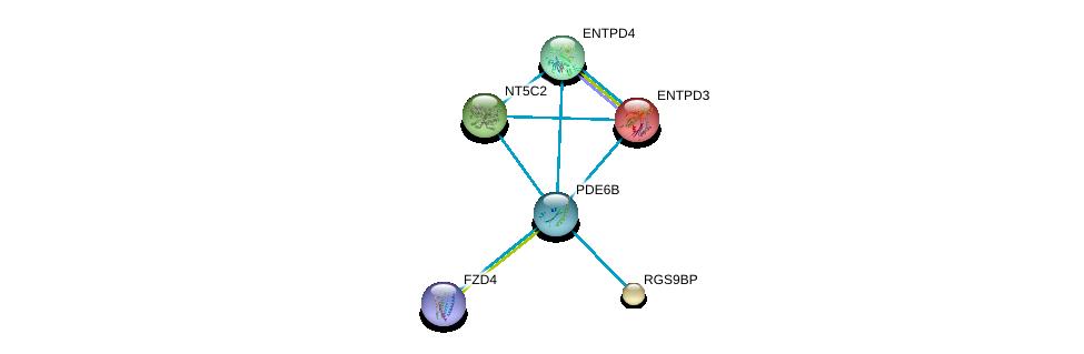 http://string-db.org/version_10/api/image/networkList?limit=0&targetmode=proteins&caller_identity=gene_cards&network_flavor=evidence&identifiers=9606.ENSP00000420295%0d%0a9606.ENSP00000301825%0d%0a9606.ENSP00000334134%0d%0a9606.ENSP00000434034%0d%0a9606.ENSP00000351520%0d%0a9606.ENSP00000339479%0d%0a