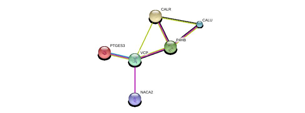 http://string-db.org/version_10/api/image/networkList?limit=0&targetmode=proteins&caller_identity=gene_cards&network_flavor=evidence&identifiers=9606.ENSP00000420381%0d%0a9606.ENSP00000262033%0d%0a9606.ENSP00000427802%0d%0a9606.ENSP00000351777%0d%0a9606.ENSP00000327801%0d%0a9606.ENSP00000320866%0d%0a
