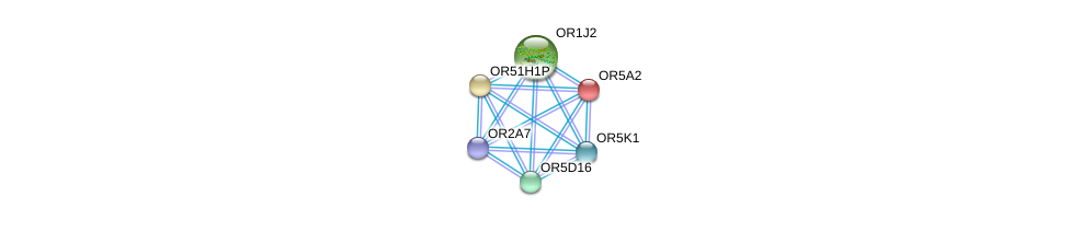 http://string-db.org/version_10/api/image/networkList?limit=0&targetmode=proteins&caller_identity=gene_cards&network_flavor=evidence&identifiers=9606.ENSP00000420502%0d%0a9606.ENSP00000367649%0d%0a9606.ENSP00000335575%0d%0a9606.ENSP00000303834%0d%0a9606.ENSP00000373193%0d%0a9606.ENSP00000322724%0d%0a