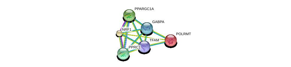 http://string-db.org/version_10/api/image/networkList?limit=0&targetmode=proteins&caller_identity=gene_cards&network_flavor=evidence&identifiers=9606.ENSP00000420588%0d%0a9606.ENSP00000215591%0d%0a9606.ENSP00000223190%0d%0a9606.ENSP00000264867%0d%0a9606.ENSP00000278070%0d%0a9606.ENSP00000346886%0d%0a