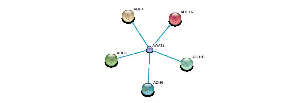 http://string-db.org/version_10/api/image/networkList?limit=0&targetmode=proteins&caller_identity=gene_cards&network_flavor=evidence&identifiers=9606.ENSP00000421172%0d%0a9606.ENSP00000209668%0d%0a9606.ENSP00000265512%0d%0a9606.ENSP00000296412%0d%0a9606.ENSP00000306606%0d%0a9606.ENSP00000378359%0d%0a