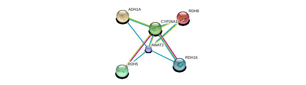 http://string-db.org/version_10/api/image/networkList?limit=0&targetmode=proteins&caller_identity=gene_cards&network_flavor=evidence&identifiers=9606.ENSP00000421172%0d%0a9606.ENSP00000257895%0d%0a9606.ENSP00000381206%0d%0a9606.ENSP00000171214%0d%0a9606.ENSP00000209668%0d%0a9606.ENSP00000224356%0d%0a