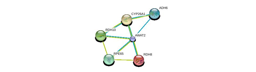 http://string-db.org/version_10/api/image/networkList?limit=0&targetmode=proteins&caller_identity=gene_cards&network_flavor=evidence&identifiers=9606.ENSP00000421172%0d%0a9606.ENSP00000378359%0d%0a9606.ENSP00000171214%0d%0a9606.ENSP00000224356%0d%0a9606.ENSP00000240285%0d%0a9606.ENSP00000262340%0d%0a