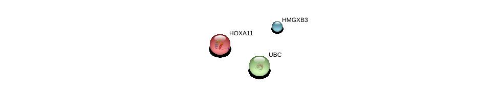 http://string-db.org/version_10/api/image/networkList?limit=0&targetmode=proteins&caller_identity=gene_cards&network_flavor=evidence&identifiers=9606.ENSP00000421917%0d%0a9606.ENSP00000344818%0d%0a9606.ENSP00000006015%0d%0a