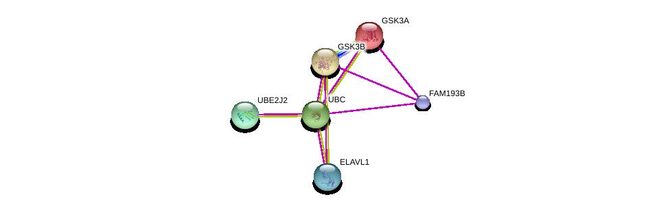 http://string-db.org/version_10/api/image/networkList?limit=0&targetmode=proteins&caller_identity=gene_cards&network_flavor=evidence&identifiers=9606.ENSP00000422131%0d%0a9606.ENSP00000344818%0d%0a9606.ENSP00000324806%0d%0a9606.ENSP00000222330%0d%0a9606.ENSP00000385269%0d%0a9606.ENSP00000383719%0d%0a