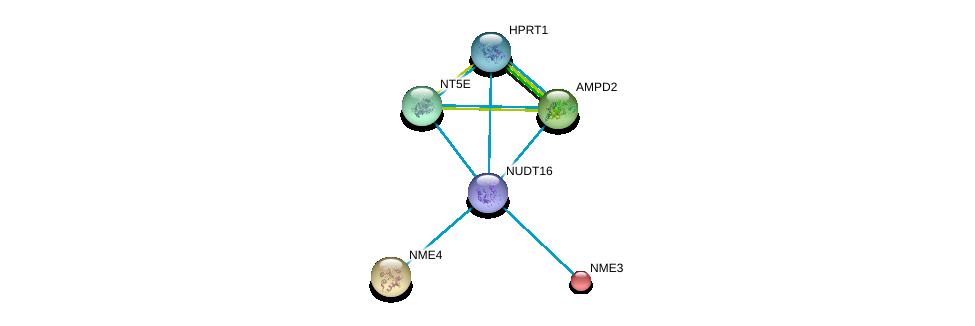 http://string-db.org/version_10/api/image/networkList?limit=0&targetmode=proteins&caller_identity=gene_cards&network_flavor=evidence&identifiers=9606.ENSP00000422375%0d%0a9606.ENSP00000219302%0d%0a9606.ENSP00000219479%0d%0a9606.ENSP00000256578%0d%0a9606.ENSP00000257770%0d%0a9606.ENSP00000298556%0d%0a