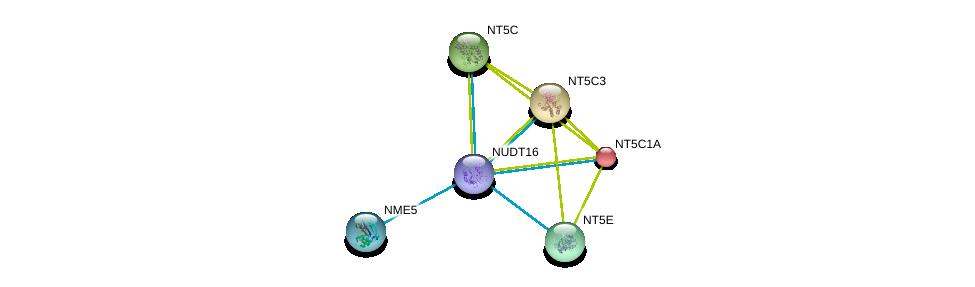 http://string-db.org/version_10/api/image/networkList?limit=0&targetmode=proteins&caller_identity=gene_cards&network_flavor=evidence&identifiers=9606.ENSP00000422375%0d%0a9606.ENSP00000235628%0d%0a9606.ENSP00000242210%0d%0a9606.ENSP00000245552%0d%0a9606.ENSP00000257770%0d%0a9606.ENSP00000265191%0d%0a