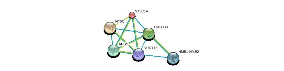 http://string-db.org/version_10/api/image/networkList?limit=0&targetmode=proteins&caller_identity=gene_cards&network_flavor=evidence&identifiers=9606.ENSP00000422375%0d%0a9606.ENSP00000235628%0d%0a9606.ENSP00000301825%0d%0a9606.ENSP00000245552%0d%0a9606.ENSP00000355493%0d%0a9606.ENSP00000376886%0d%0a