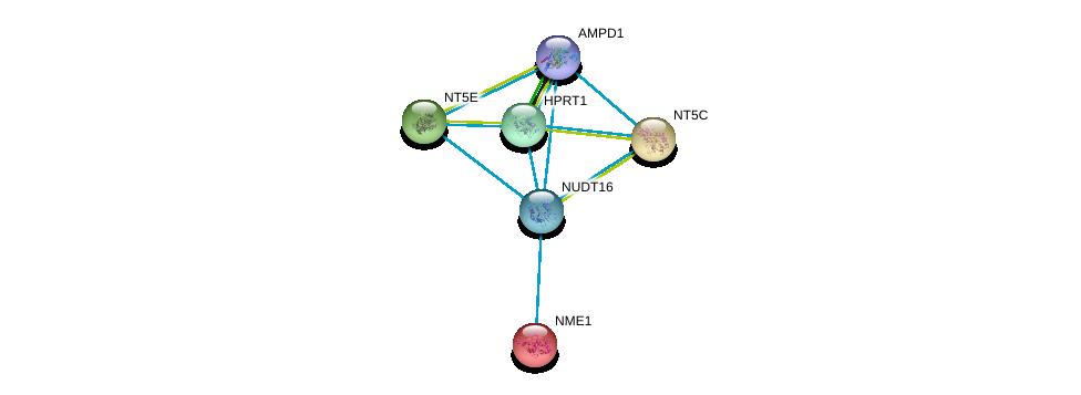 http://string-db.org/version_10/api/image/networkList?limit=0&targetmode=proteins&caller_identity=gene_cards&network_flavor=evidence&identifiers=9606.ENSP00000422375%0d%0a9606.ENSP00000430075%0d%0a9606.ENSP00000298556%0d%0a9606.ENSP00000245552%0d%0a9606.ENSP00000257770%0d%0a9606.ENSP00000013034%0d%0a