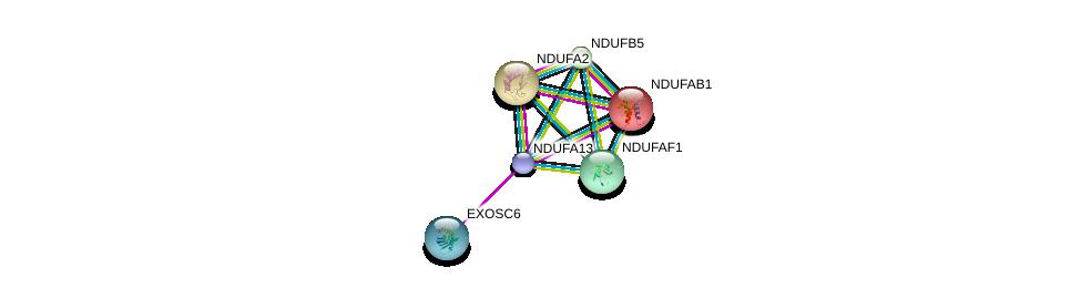 http://string-db.org/version_10/api/image/networkList?limit=0&targetmode=proteins&caller_identity=gene_cards&network_flavor=evidence&identifiers=9606.ENSP00000423673%0d%0a9606.ENSP00000252102%0d%0a9606.ENSP00000007516%0d%0a9606.ENSP00000398597%0d%0a9606.ENSP00000259037%0d%0a9606.ENSP00000260361%0d%0a