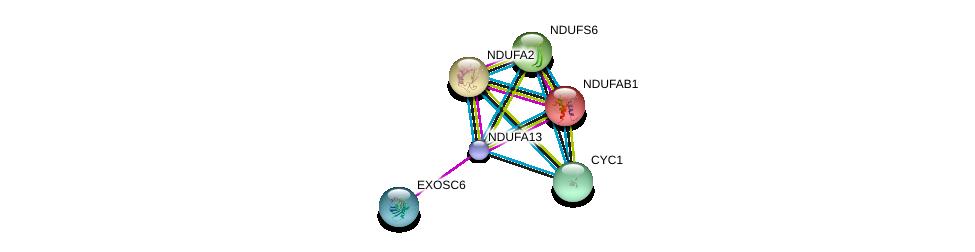 http://string-db.org/version_10/api/image/networkList?limit=0&targetmode=proteins&caller_identity=gene_cards&network_flavor=evidence&identifiers=9606.ENSP00000423673%0d%0a9606.ENSP00000252102%0d%0a9606.ENSP00000007516%0d%0a9606.ENSP00000398597%0d%0a9606.ENSP00000274137%0d%0a9606.ENSP00000317159%0d%0a