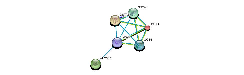 http://string-db.org/version_10/api/image/networkList?limit=0&targetmode=proteins&caller_identity=gene_cards&network_flavor=evidence&identifiers=9606.ENSP00000423822%0d%0a9606.ENSP00000293761%0d%0a9606.ENSP00000359998%0d%0a9606.ENSP00000248935%0d%0a9606.ENSP00000284562%0d%0a9606.ENSP00000381340%0d%0a