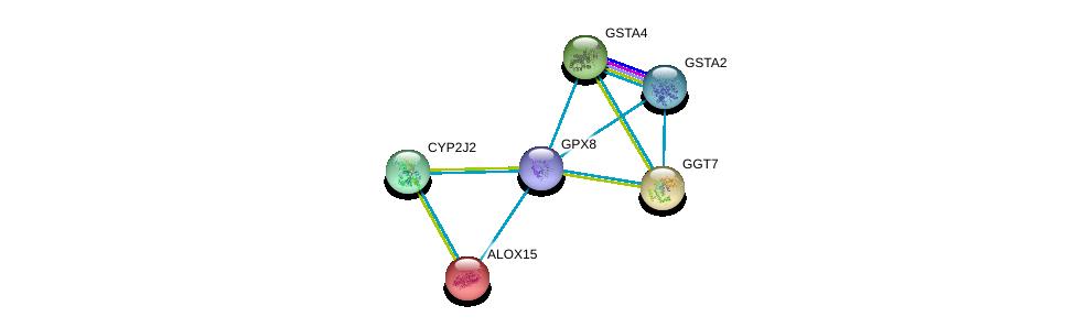 http://string-db.org/version_10/api/image/networkList?limit=0&targetmode=proteins&caller_identity=gene_cards&network_flavor=evidence&identifiers=9606.ENSP00000423822%0d%0a9606.ENSP00000420168%0d%0a9606.ENSP00000360247%0d%0a9606.ENSP00000338964%0d%0a9606.ENSP00000293761%0d%0a9606.ENSP00000359998%0d%0a