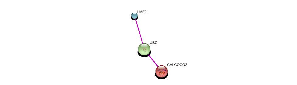 http://string-db.org/version_10/api/image/networkList?limit=0&targetmode=proteins&caller_identity=gene_cards&network_flavor=evidence&identifiers=9606.ENSP00000424381%0d%0a9606.ENSP00000344818%0d%0a9606.ENSP00000258947%0d%0a