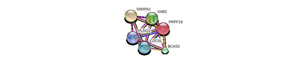 http://string-db.org/version_10/api/image/networkList?limit=0&targetmode=proteins&caller_identity=gene_cards&network_flavor=evidence&identifiers=9606.ENSP00000424417%0d%0a9606.ENSP00000227524%0d%0a9606.ENSP00000360532%0d%0a9606.ENSP00000351137%0d%0a9606.ENSP00000254193%0d%0a9606.ENSP00000358554%0d%0a